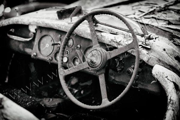 Das Armaturenbrett eines Jaguar. Als englisches Auto natürlich rechts gelenkt. Es verrottet n einem Wald vor sich hin.