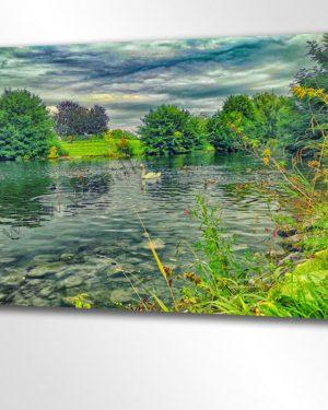 Idylle im Schwanensee. Hier schwimmt ein stolzer Schwan in einem romantischen See nahe des Ufers. Schilf und Enten sowie Seerosen und Gräser säumen den Rand unterhalb der Bäume.